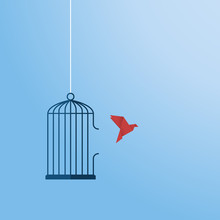 Flying Bird And Cage. Freedom ...