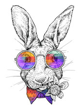Hand Drawn Hipster Style Portrait Of Funny Rabbit In Glasses. Vector Illustration Isolated On White