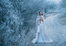 Young Happy Lady Snow Queen Wa...