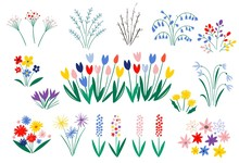Set Of Spring Flowers In A Fla...