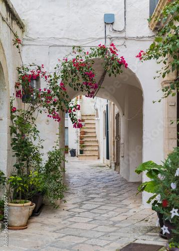 Fototapety, obrazy: charming street and passageway with flowers in Italy