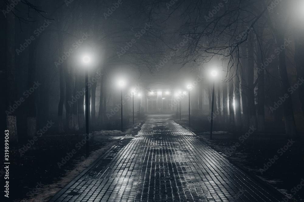Fototapeta Autumn city park at night in fog