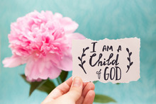 I Am A Child Of God - Christian Calligraphy Lettering On Card With Pink Peony Flower, Biblical Verce And Religion Concept