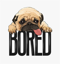 Pug Dog Illustration With Slogan