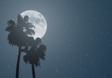 Nice Moon And Palms