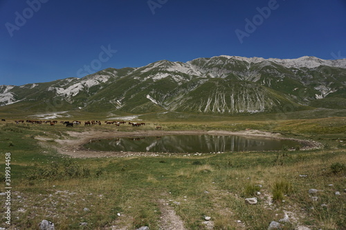 Fotografie, Obraz Scenic View Of Gran Sasso Ditalia Mountain Against Clear Sky