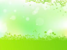 草花と木漏れ日 背景