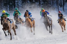Horseback Riding On Snow