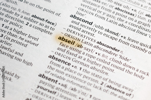 The word or phrase Abseil in a dictionary. Canvas Print