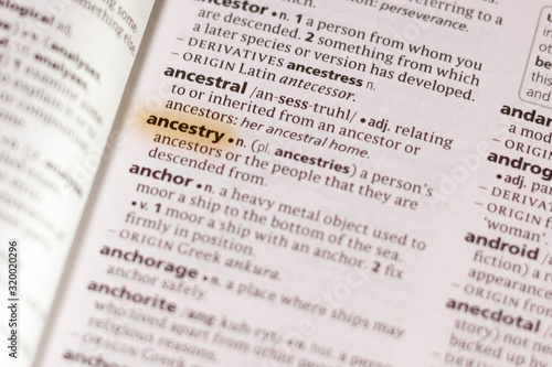 The word or phrase Ancestry in a dictionary. Canvas Print