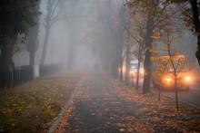 Cars Move Along An Autumn Road...