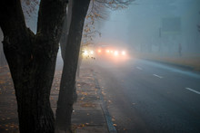 Heavy Fog On The Road In The E...