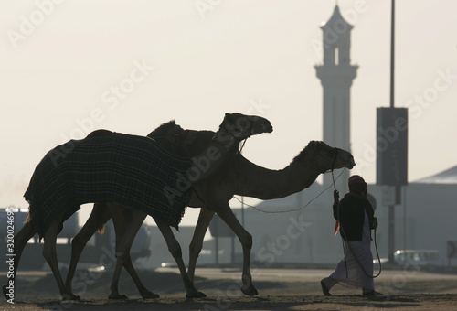 Foto Man With Camels Walking On Sand Against Clear Sky