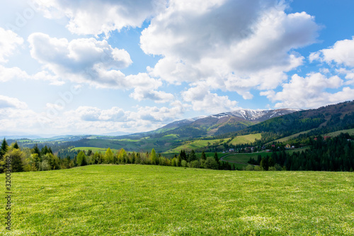 Obraz mountainous countryside landscape in spring. grassy meadow on top of a hill. mountain ridge with snow capped tops in the distance. sunny weather with clouds on the blue sky - fototapety do salonu