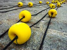 Yellow Buoys At Harbor
