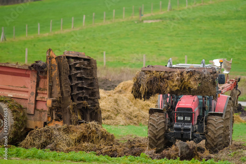 Leinwand Poster tractor and its telescopic fork taking the manure