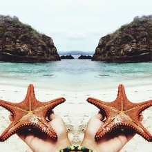 Cropped Hands Holding Starfishes On Beach Against Sky