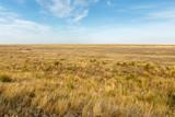 Landscape of the deserted steppe. Kazakhstan. steppe in Kazakhstan