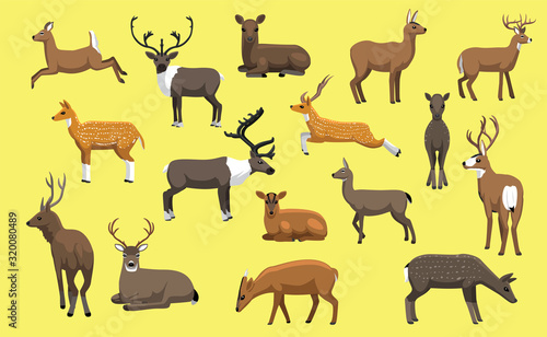 Tela Various Deer Cute Cartoon Vector Illustration
