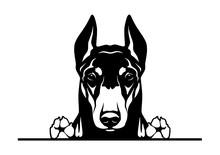 Doberman Dog Breed Face Head I...