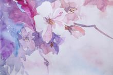 Closeup View Of Beautiful Flor...