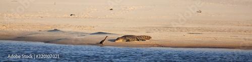 SCENIC VIEW OF SEA Fototapete