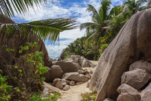 Path Along The Tropical Beach ...