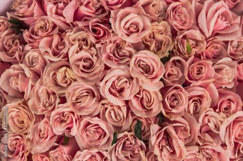 ramo de rosas rosas Wallpaper Mural