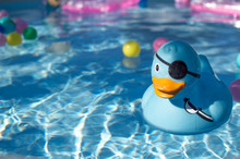 CLOSE-UP OF BLUE RUBBER DUCK I...