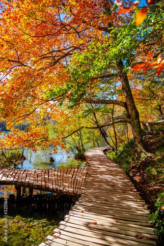 Okleiny na drzwi - Krajobraz - Pejzaż  autumn-landscape-in-plitvice-croatia