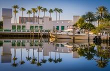 Lake Beach Water Palm Reflecti...