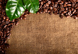 Coffee background with roasted beans and leaves