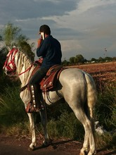 Man Riding Horse While Talking On Cellphone Against Sky