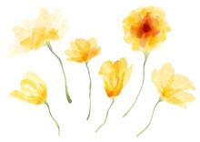 Floral_Element_9_C