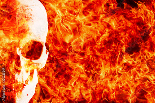 Human skull on hellfire background with copy space. Canvas Print