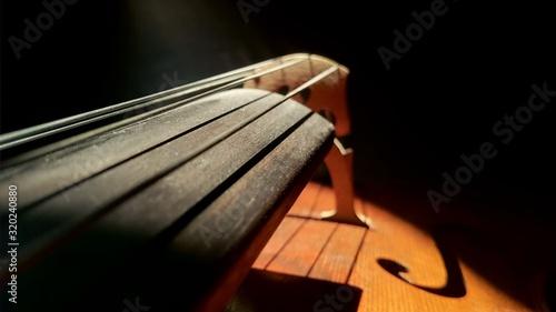 Fotografía Close-Up Of Cello Against Black Background