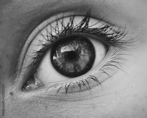 Obraz Close-Up Of Human Eye - fototapety do salonu