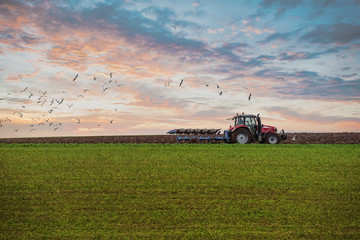 farmer plowing his fields at sunset
