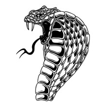 Illustration Of Cobra Snake. D...