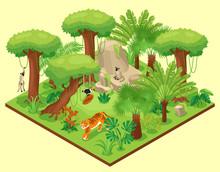 Jungle Landscape Isometric Composition