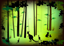 The Forests And Animals Wildli...