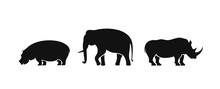 Elephant Logo. Isolated Elepha...