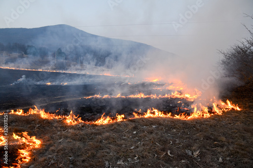 Canvastavla Dry grass burns on meadow in countryside at sunset