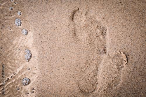 Fotografie, Obraz Ślad stopy na piasku