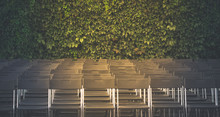 Rows Of Folding Chairs, Empty ...
