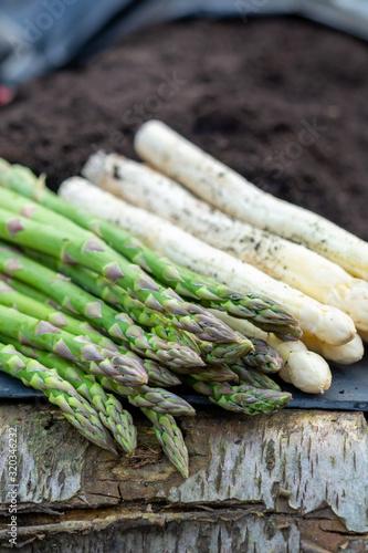 New harvest of  white and green asparagus vegetable in spring season, asparagus Wallpaper Mural