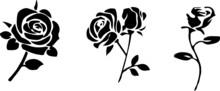 Rose Icon Isolated On Background