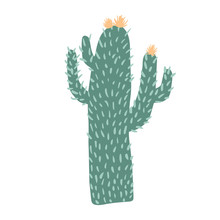 Cacti Flower Isolated On White Background. Big Cactus In Doodle Style. Cute Prickly Green Cactus.