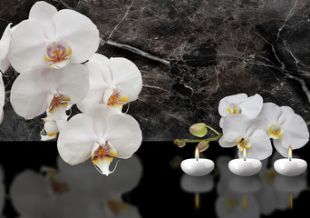 Fototapeta Storczyki white orchid with candle