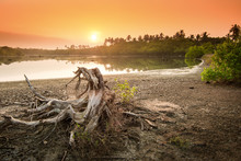 Sunset On The Sandy Tropical L...